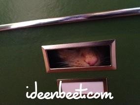 Think outside the box - ideenbeet.com